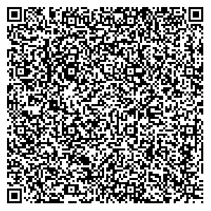 Welectrics - electrics & security systems QR-CODE